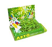 Подарочный набор Живая открытка Лето круглый год